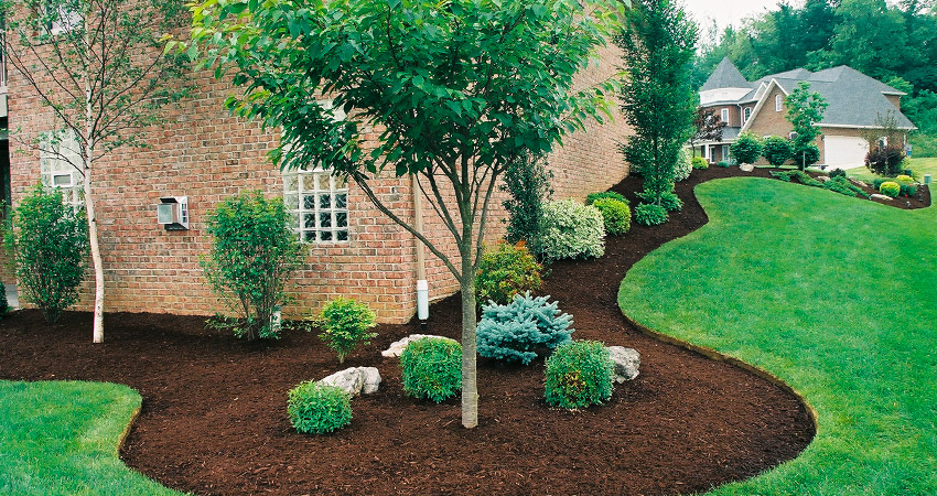 Landscaping Property Lines Pictures : Patrizio landscaping lawn care in south