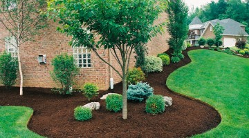 Tips for Landscaping Property Lines